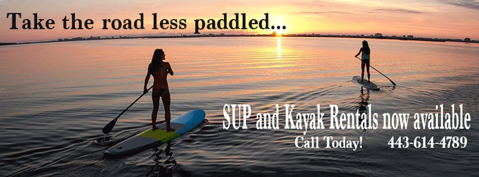 SUP Sunset Rental