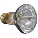 100w/20/S/FL Bulb APC12100M3